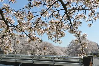 地黄橋.JPG