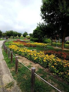 18-08-09-10-18-30-107_photo.jpg